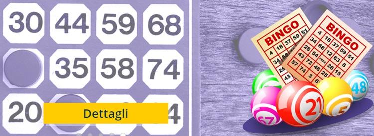 Bingo-AdmiralYes