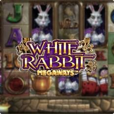 https://affidabile.org/slots/white-rabbit-megaways/